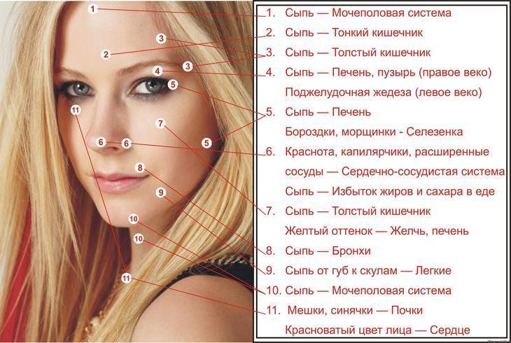 Карта прыщей на лице: что они означают? Расположение прыщей на лице и болезни