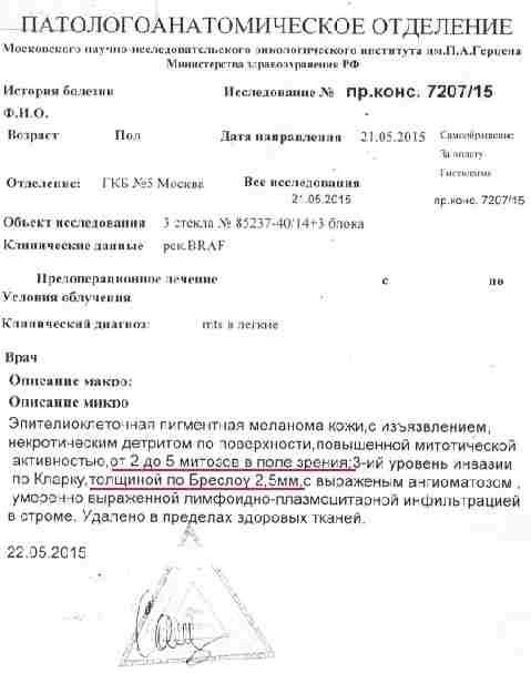 Заключение российских специалистов, описание