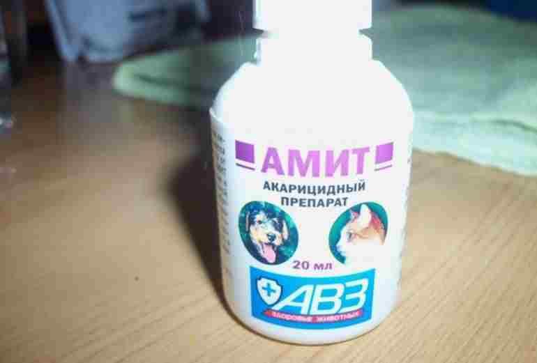 Препараты для лечения кошек в домашних условиях