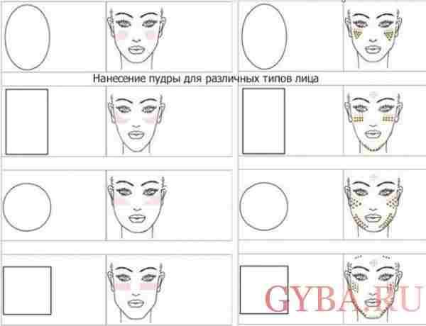 Схема нанесения пудры на лицо