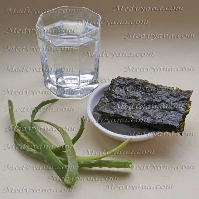 Алоэ и водоросли для приготовления лосьона в домашних условиях
